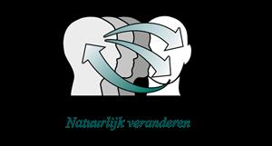 Nieuwenhuis Advies & Training Norg : Maatwerkinterventies: training, (team)coaching, intervisie, begeleiding